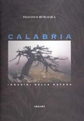 Calabria verde : guida naturalistica ed escursionistica