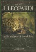 I leopardi nella riserva di Londolozi