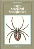 Ragni, scorpioni, scolopendre (ANIMALI – INSETTI – ARACNIDI – ARTROPODI)