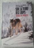 Sur la terre des loups