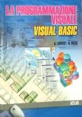 La Programmazione visuale Visual Basic. Per le Scuole superiori