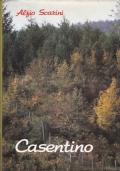 Casentino, Alfio Scarini, Calosci Cortona 1988.