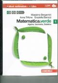 Matematica.verde. Algebra. Geometria. Statistica. Con espansione online. Vol.1