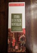 Storia di un paese: Montaillou. Un villaggio occitanico durante l'inquisizione (1294-1324)