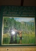 Animali di tutto il mondo. Enciclopedia sistematica-ecologica-etologica