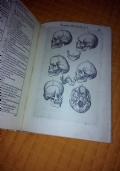 anatomia del corpo humano composta per M. Giouan Valuerde di Hamusco