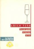 Amico vino: piccola guida al piacere del vino