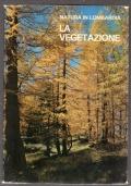 vegetazione (la)