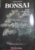 bonsai l'arte di coltivare alberi in miniatura
