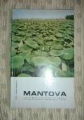 Rivista Scout Avventura-Settimanale dei soci dell'Agesci - settembre 1985 - TRAPPER-ANIMALI-AVVENTURA-SOPRAVVIVENZA-NATURA-FOCE-LAGUNA-CARNEVALE-MASCHERE