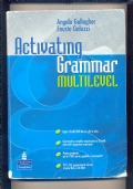 ACTIVATING GRAMMAR MULTILEVEL ( senza CD-ROM)