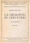 La necropoli di Cerveteri (GUIDE – ITINERARI – ETRUSCHI)