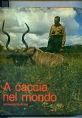 A CACCIA NEL MONDO