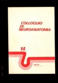 Colloquio di Neuroanatomia