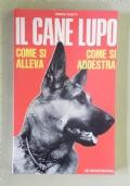 IL CANE LUPO - COME SI ALLEVA - COME SI ADDESTRA