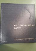 Protezione delle coste: seminario sul tema