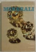Enciclopedia illustrata dei minerali