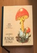 GUIDA PRATICA AI FUNGHI IN ITALIA