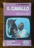 IL CAVALLO - Come si riconoscono e si curano le più comuni malattie dei cavalli