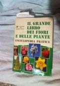 Cento anni di vita milanese 1860-1960