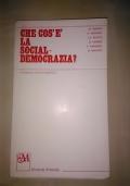 Che Cos'è La Socialdemocrazia?