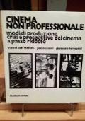 CINEMA NON PROFESSIONALE. Modi di produzione, crisi e prospettive del cinema a passo ridotto.