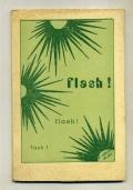 SUOR VITTORIA DA ROIT - FLASH FLASH FLASH SULLA VITA QUOTIDIANA - POESIE 1981