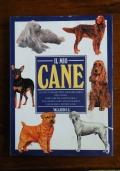 IL MIO CANE - Il cane è veramente il migliore amico dell' uomo? Come fare per addestrarlo? Una grande guida per scegliere e conoscere il proprio cane