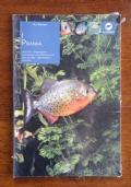 I PIRANHA - Anatomia, alimentazione, riproduzione, prevenzione e cura delle malattie, allevamento in acquario