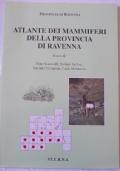 Caserta - la reggia e le fontane, borgo medievale, s. leucio