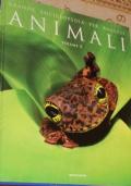 Animali. Grande enciclopedia dei ragazzi. vol. 1