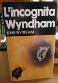 L'incognita Wyndham