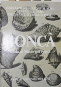 Roncà. Guida al Museo dei fossili
