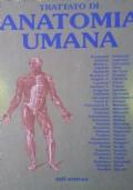 Trattato di Anatomia Umana 4 edizione