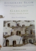 Il Soave e Verona - vini e castelli delle  terre  scaligere