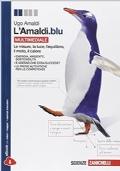 L'Amaldi.blu Multimediale