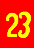 SUPER ALMANACCO DI PAPERINO 23 numeri