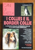I COLLIES E IL BORDER COLLIE - IL ROUGH COLLIE, LO SMOOTH COLLIE E LO SHETLAND SHEEPDOG