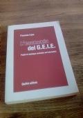 L'economia del GEIE. Profili di strategia normativi ed informativi
