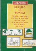 SCUOLA DI BONSAI