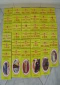Lotto collezione di oltre 100 libri gialli Newton della collana Il giallo economico, libro compagnia del giallo