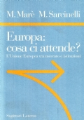 EUROPA: COSA CI ATTENDE? L'UNIONE EUROPEA TRA MERCATO E ISTITUZIONI