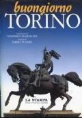 La città dell'Avvocato. Giovanni Agnelli e Torino: storia di un amore