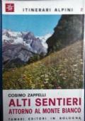 Escursioni ed arrampicate nel Canavese. Vol. 1