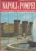 Napoli e Pompei - La città, le isole, il golfo, il Vesuvio, gli scavi
