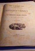 Mineralogia e geologia per il secondo anno del liceo secondo i nuovi programmi del 23 ottobre 1884. Con 73 incisioni.