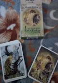 Carte Oracolo -Wisdom of the Hidden Realms Oracle Cards - carte oracolo