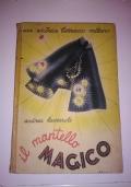 IL MANTELLO MAGICO
