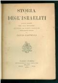 Storia degl'israeliti. Dalle origini fino alla monarchia secondo le fonti bibliche criticamente esposte. Volume II - La monarchia.