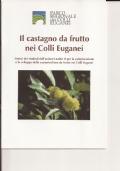 Il castagno da frutto nei Colli Euganei